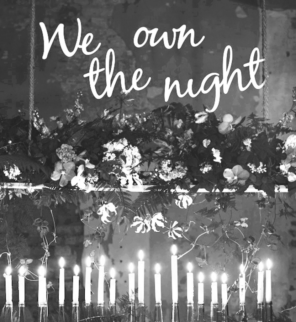 we-own-the-night_vorschau